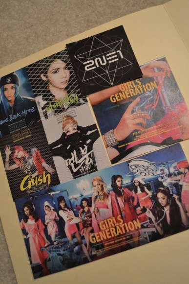 "Although the albums were both delayed, SNSD and 2NE1 released teaser images to increase fans' excitement before the albums came out. As of February 27, ""Mr.Mr."" has hit #1 in iTunes in 11 different countries; ""Crush"" is #1 in over 4 countries, as well as charting #10 iTunes album in the United States. ""I think K-pop could be successful in the US if they did more promotions and concerts here,"" Naik said. PC: Priscilla Ng"