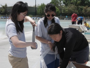 "During the last moments of the Cardboard Boat Race, seniors Sophia Li, Monica Hung, and Emma Luu make their cardboard boat waterproof with bubble wrap and duct tape.  The event was held at the wave pool in Boomerang Bay and each team was given cardboard, tape, and bubble wrap.  ""I think using only bubble wrap to cover the boat would have been better than covering half of the boat with tape and the other half with bubble wrap,"" Luu said.  ""That would have saved us more time to make stronger support beams so the boat could have a flatter bottom.""  PC: Caroline Lee"